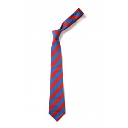 Berry Hill School Tie - Yr 6